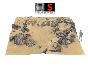 dune beach ground 16k 3D model