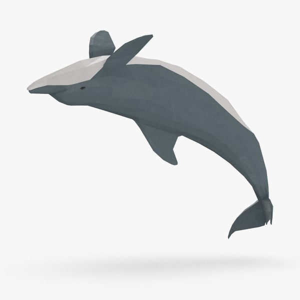 dolphin---backflip model