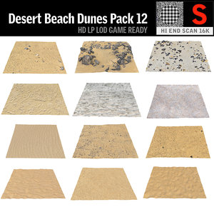 desert dunes beach ground 3D model