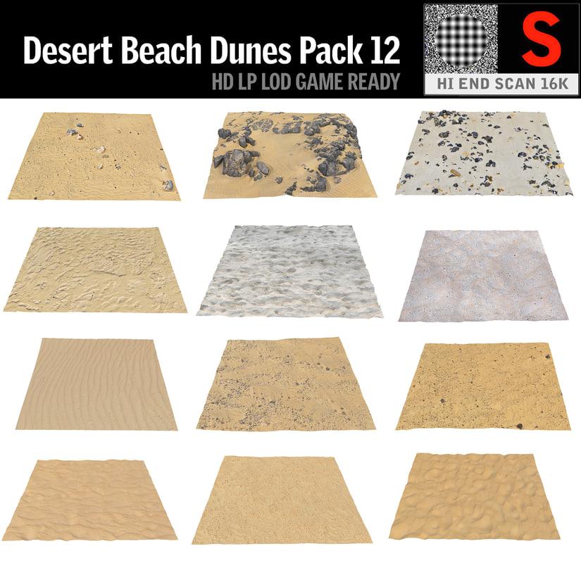 desert dunes beach ground 3D model