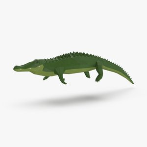alligator---swimming model