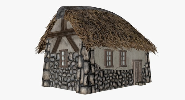 3D village house roof model