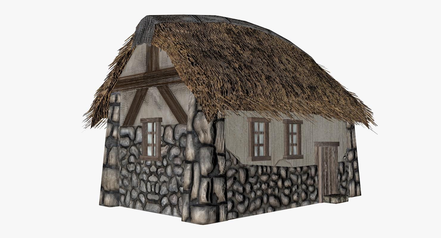3D village house roof model