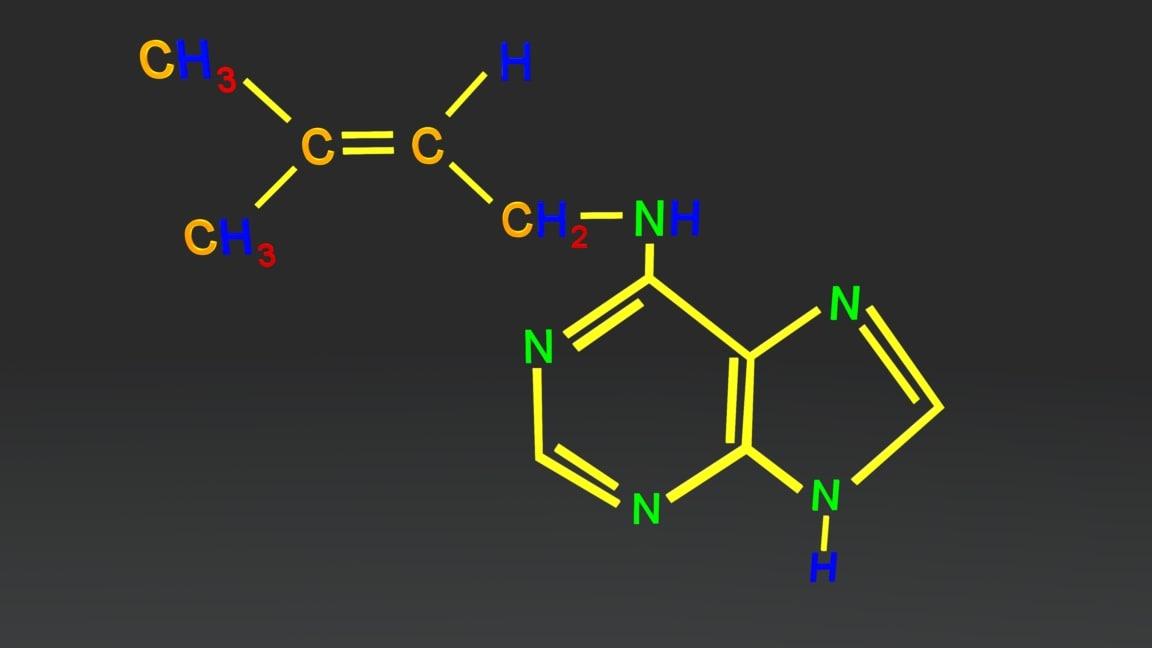 cytokinins 3D