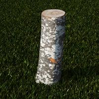 scanned tree stump 3D model