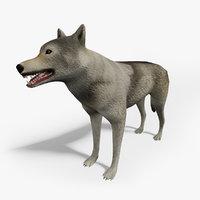 ready wolf 3D model