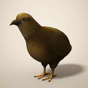 cartoon quail 3D model