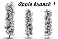 3D flowering apple tree branch