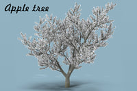 3D flowering apple tree