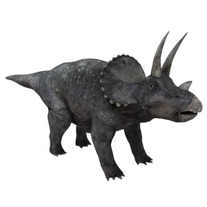 3D model triceratops
