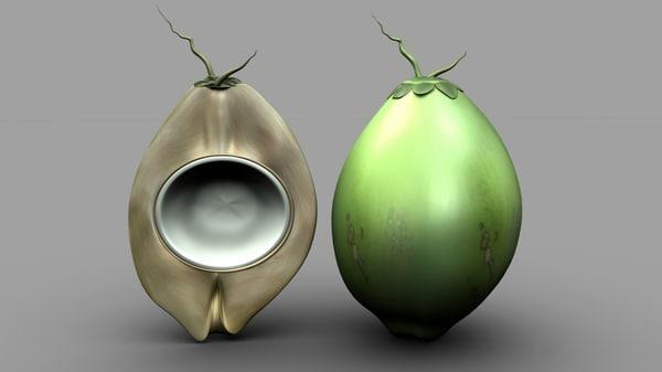 3D model ovaries coconut