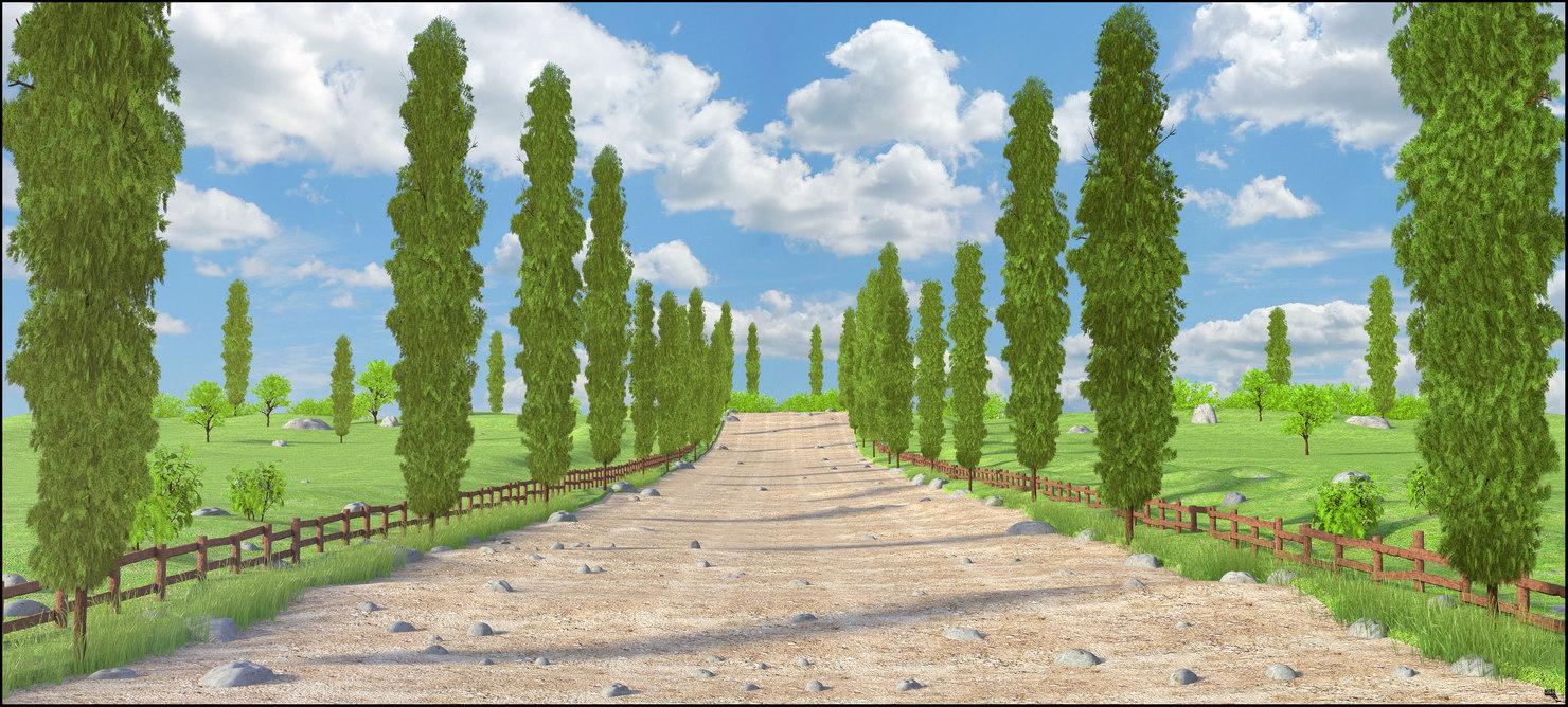 cipres path 3D