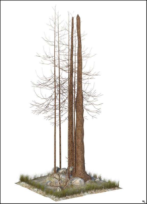 3D winter tree