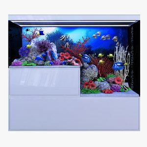 3D aquarium rostratus parasema model