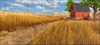 barn landscape farm 3D