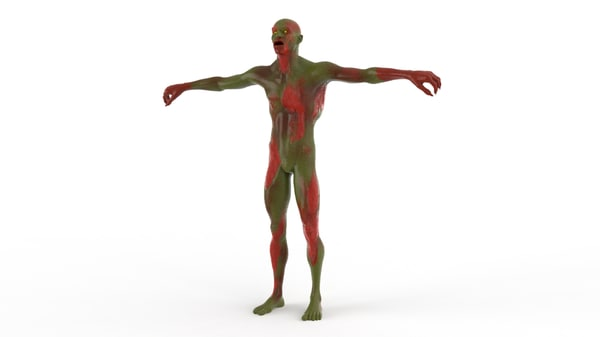 realistic zombie character body 3D model