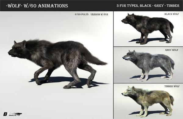 3D model timber wolf hair fur