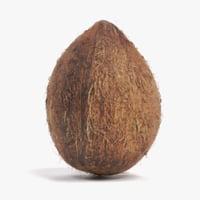 3D coconut coco nut