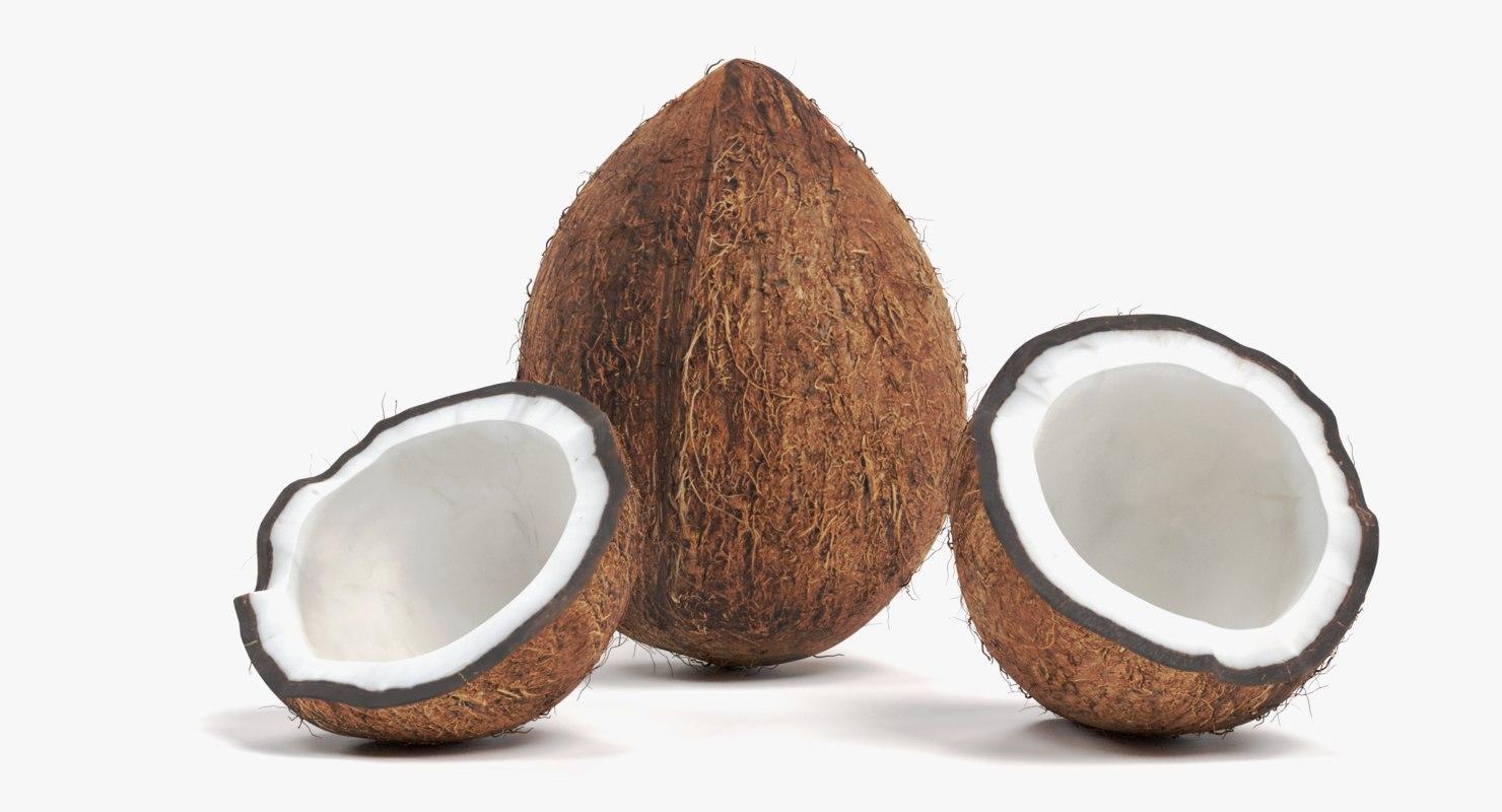 3D coconuts cracked model