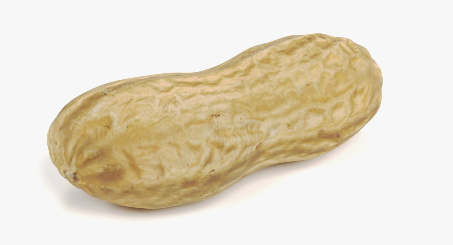 peanut husk model