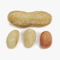 peanuts pbr 3D model