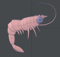 cartoon shrimp 3D model