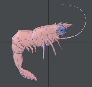 cartoon shrimp 3D model