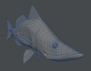 3D snook fish model