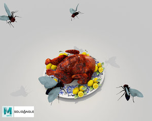 3D food chicken turkey model
