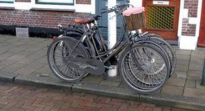 3D pashley bicycle saddle