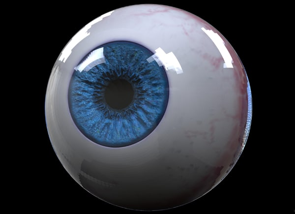 realistic eyeball hd model