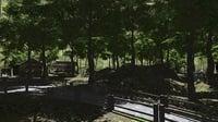 3D village woods model