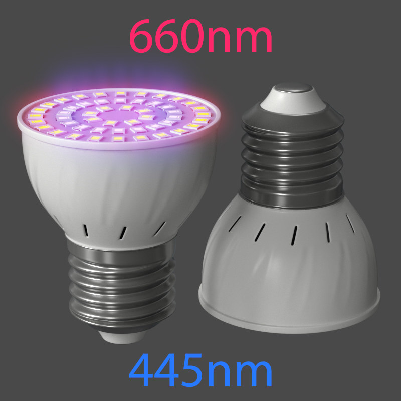 led lamp plant 3D model