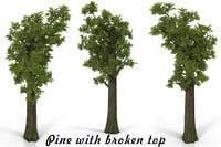 3D pine broken model