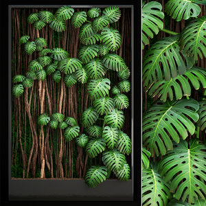 3D vertical gardening monstera model