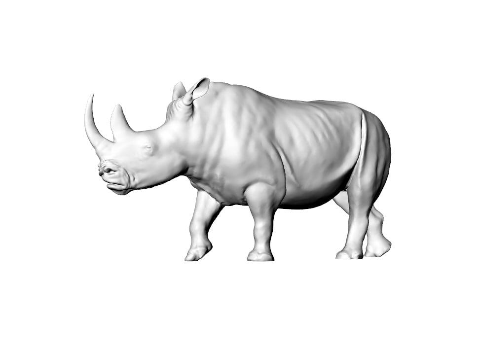 3D model realistic rhino