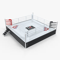 3D complete competition boxing ring
