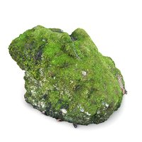 3D scan limestone moss