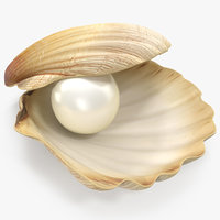 pearl shell 3D model