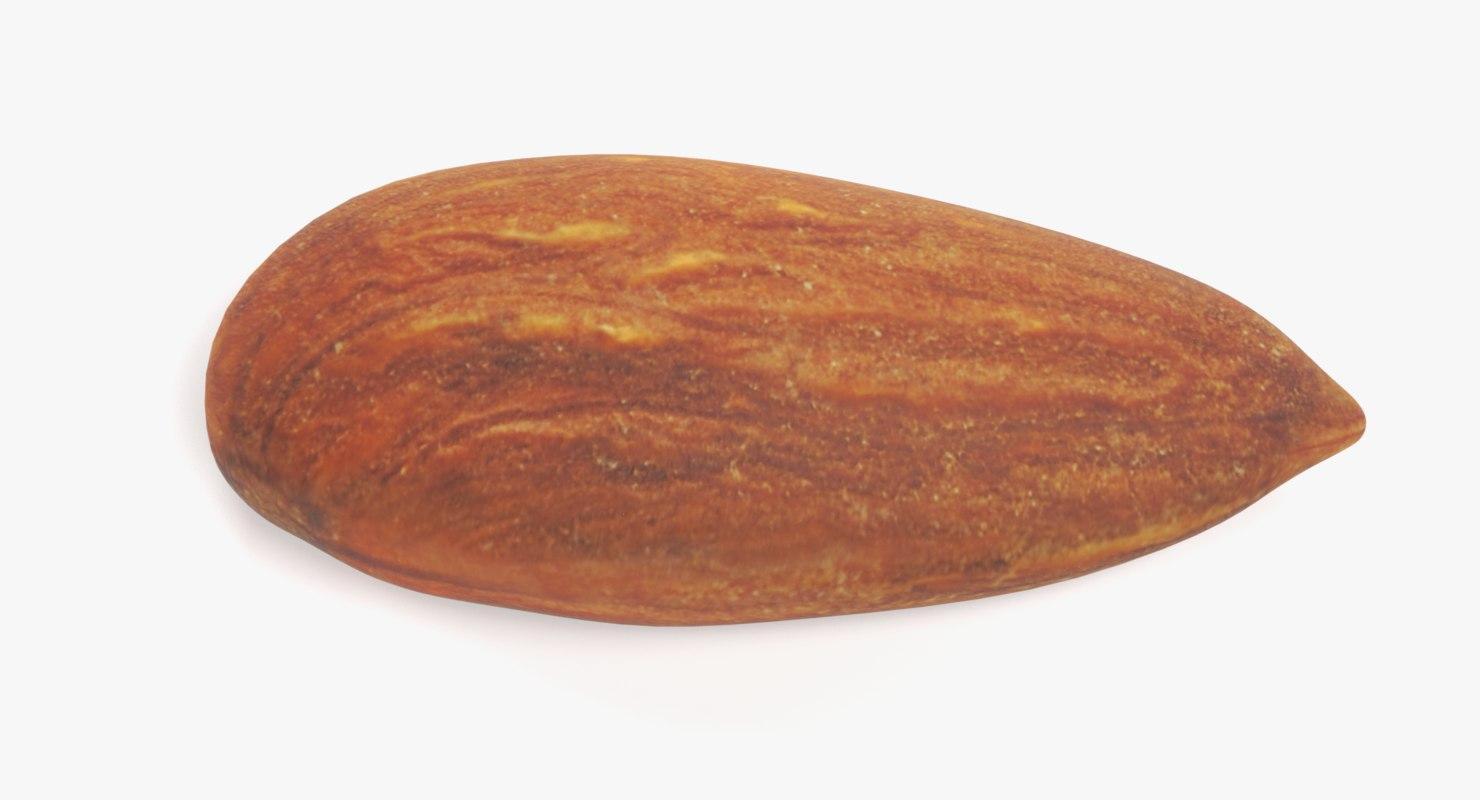 almond nut pbr 3D model