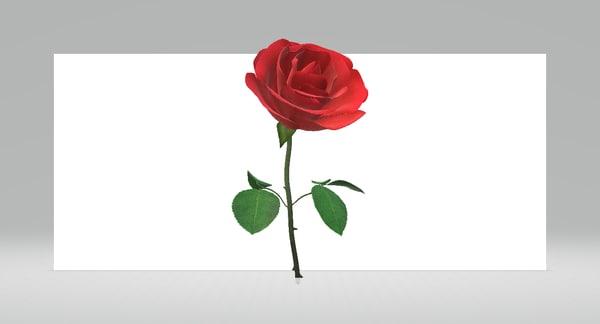 3D model rose