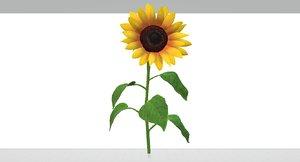 sunflowers 3D model
