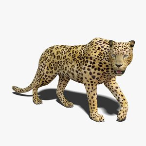 leopard rigged 3D model