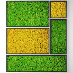 3D model stabilized moss