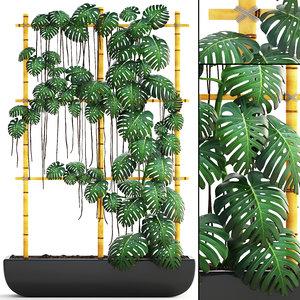 3D model monstera vertical garden