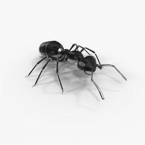robotic ant 3D model