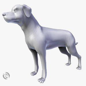 3D guard dog