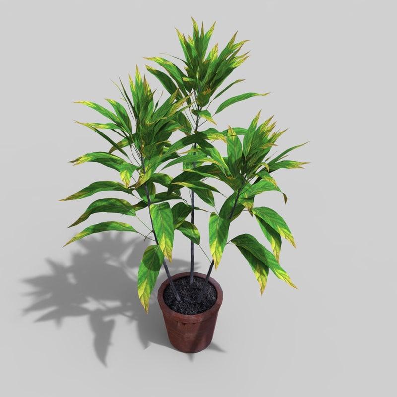 plant 2 3D model