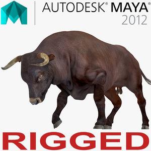 3D bull rigged model