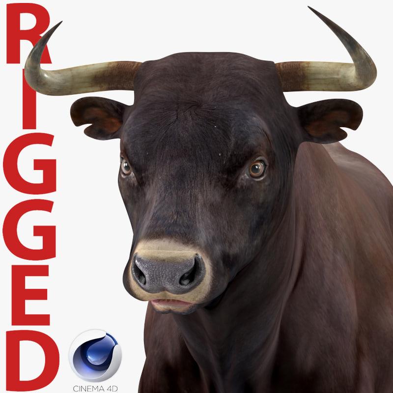 3D bull rigged